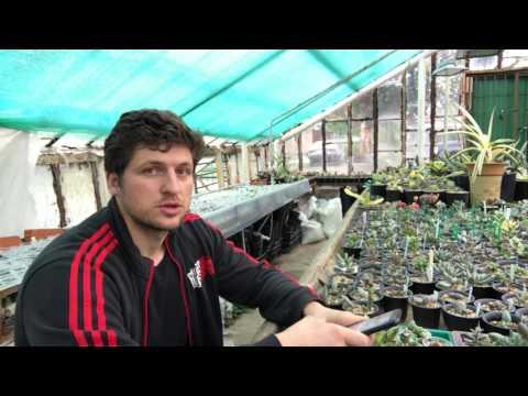 Мастер Георгий Аристов отвечает на вопросы подписчиков - 1