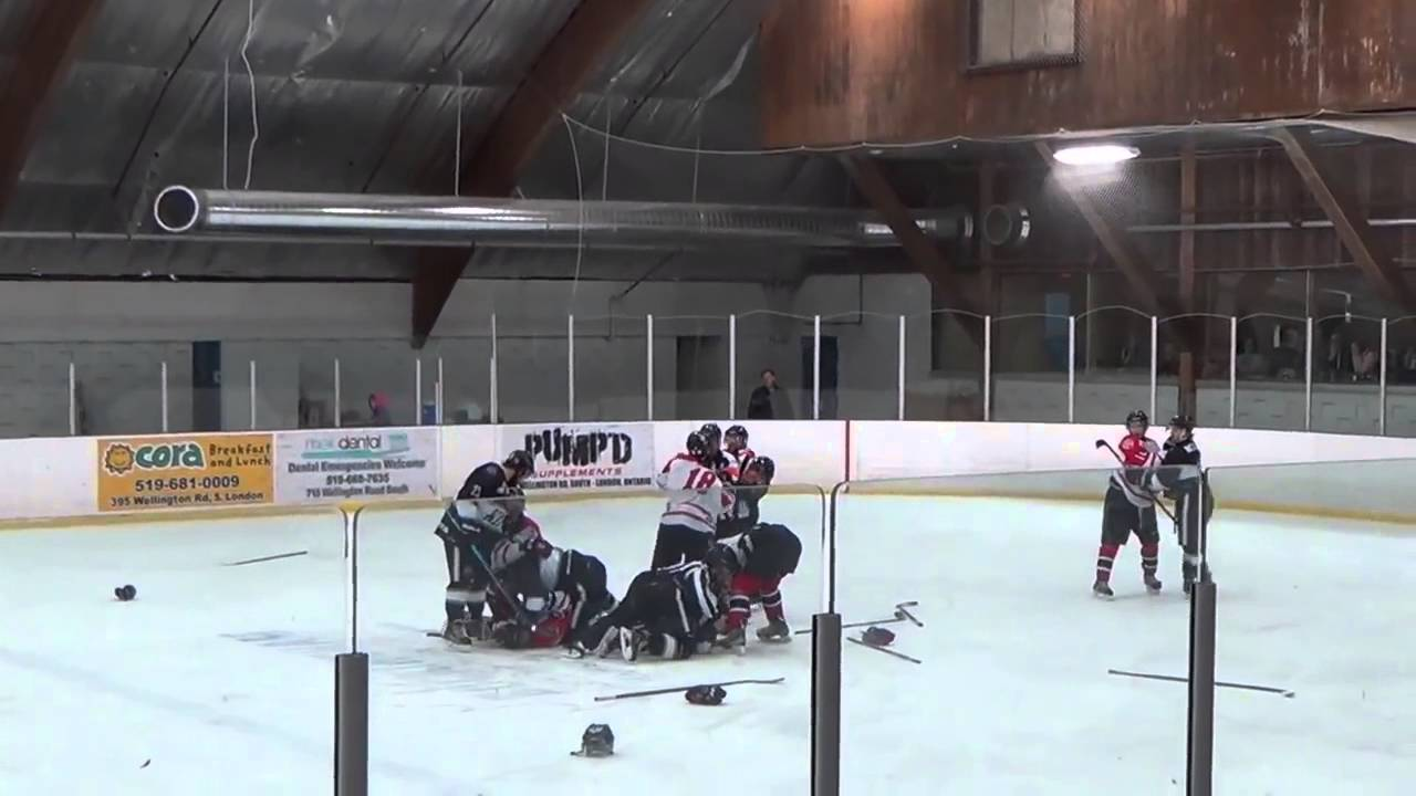 Hockey ref punches player, trainer punches ref 2016