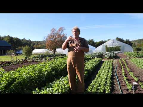 No Till Farming/Gardening Techniques (Excerpt From Neversink Farm Course)