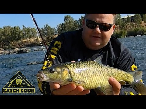 World Class Fly-fishing Along The Vaal River [CATCH COOK]