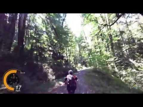 MTB Leif Erikson Trail in Forest Park, Portland
