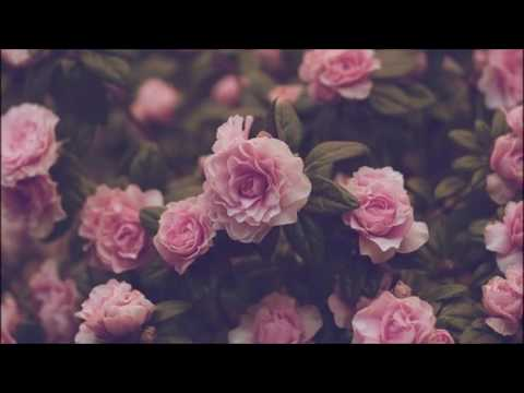 Louden Swain~She waits lyrics