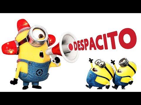 Despacito Minions Style (Remix) | Luis Fonsi - Despacito ft. Daddy Yankee