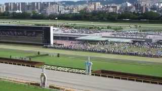 元SDN48の津田 麻莉奈さんとJRA主催のビギナー向け競馬セミナーREXSに参...