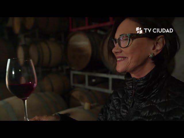 Historias de Vino | Capítulo 1: Tannat en Uruguay