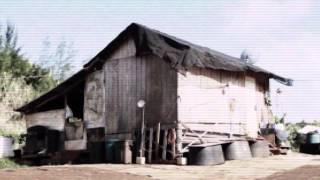 Human Trafficking: Hawaii Farms (Vietnamese Translation)