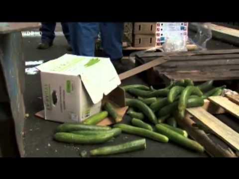 Taste the Waste - über Lebensmittelverschwendung und Lebensmittelretter part.2