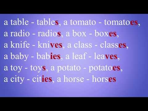 Английский язык. Множественное число существительных.