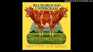 Bluegraound Undergrass - The Times They Are A Changin'