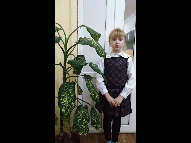 Изображение предпросмотра прочтения – ЕкатеринаДолматкина читает произведение «Пожалуйста, добрым будь!» Л.Ерохиной