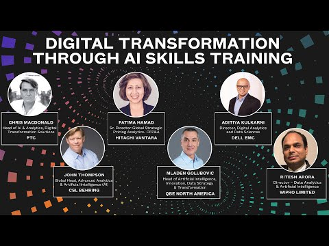 Digital Transformation Through AI Skills Training Panel