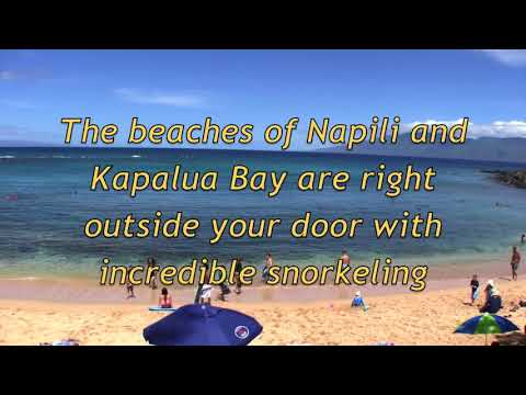 Maui Direct Oceanfront Luxury Vacation Rental at Napili Shores