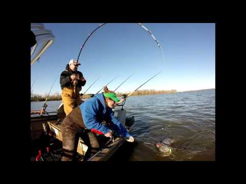 Video Catfishing james river