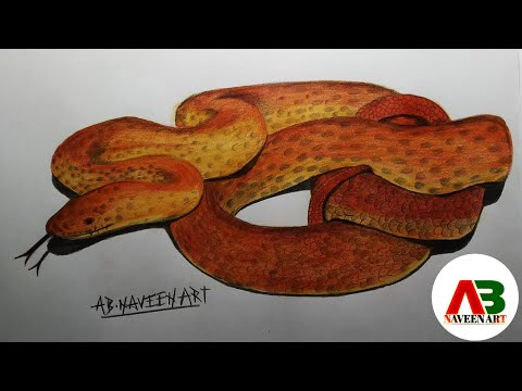 3D snake painting || step by step || color pencil art || AB Naveen art || episode #52