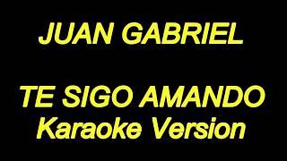 Juan Gabriel - Te Sigo Amando (Karaoke Lyrics) NUEVO!!