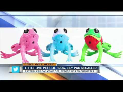 Moose Toys recalls Little Live Pets Lil Frog plastic toys due to chemical and injury hazards