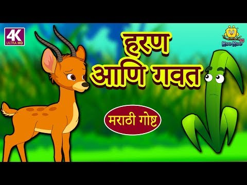 हरण आणि गवत - Marathi Ghosti   Marathi Story for Kids   Marathi Fairy Tales   Koo Koo TV Marathi