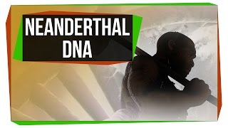 Repeat youtube video What Neanderthal DNA Is Doing To Your Genome