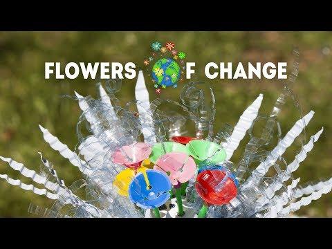 Flowers of Change : L'art pour changer le monde
