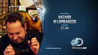 Discovery Channel HD Poland (Summer Request #67) Continuity 2014