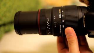 Sigma 70-300mm f 4 - f 5 6 APO Lens Review with samples
