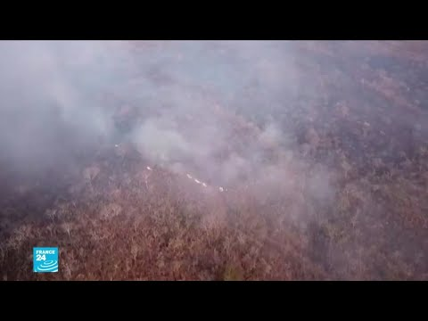 أكبر غابة في العالم تحترق  - نشر قبل 3 ساعة