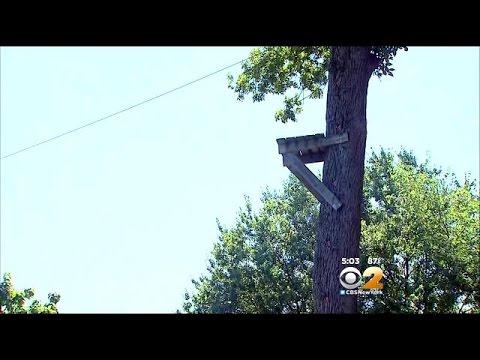 Teen Falls From Zip Line At Glen Rock High School