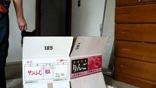 甲斐犬トラのジャンプトレーニングです。 http://blog.goo.ne.jp/joykun17.