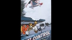 Pest Control (Termite)