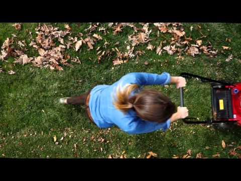 A short PSA extolling the benefits of leaf mulching for your lawn.  PSA created by Edouard Nammour for the Southern Westchester Energy Action Consortium and Greenburgh Nature Center. This PSA was created in support of the the Love 'Em and Leave 'Em.