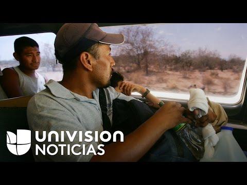 Aumenta el número de centroamericanos pidiendo asilo en México