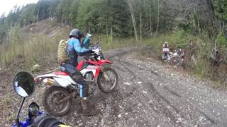 Dual Sport Group Ride WR250R CRF250L