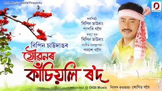 Joubonor Kasiyoli Rowd Assamese Song Download & Lyrics