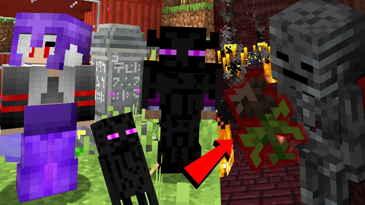 Armura COMPLETA m-a TRANSFORMAT IN ENDERMAN (Wither Rose?) Minecraft