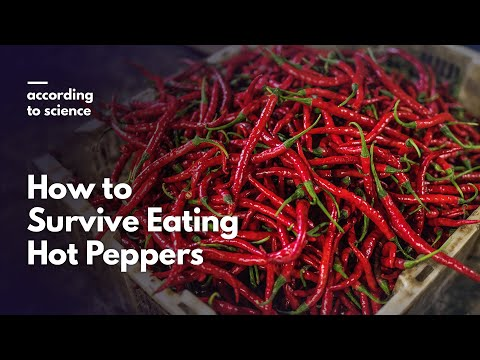 Could Eating a warm Pepper Give Back towards the ER