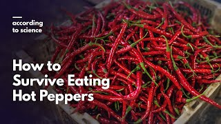 How to Survive Eating Hot Peppers, According to Science