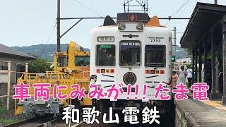 ◆車両にみみが!!! たま電◆ 和歌山電鉄