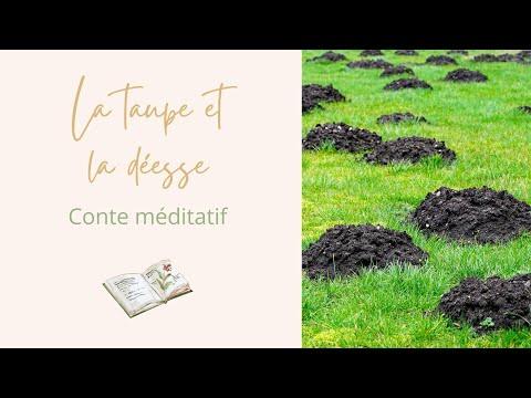 ✨ La taupe et la déesse ☙ Conte méditatif