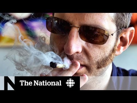 Pot driving laws facing legal challenges
