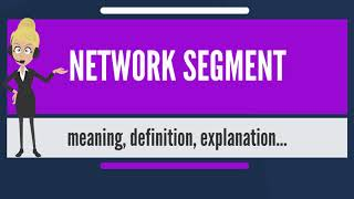 What is NETWORK SEGMENT? What does NETWORK SEGMENT mean? NETWORK SEGMENT meaning & explanation