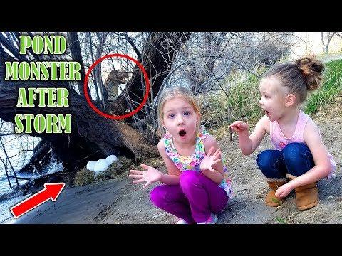 Monster in River!!! HUGE Eggs in Nest Found After Storm! Sharer's Pond Monster???