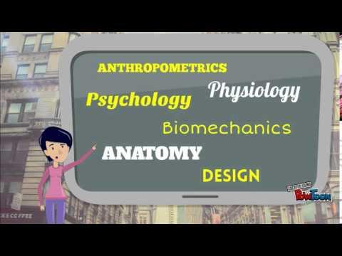 Introduction Of Ergonomics