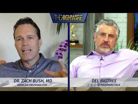 Zach Bush MD: Highwire with Del Bigtree Interview 2020