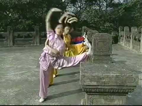 entrenamiento diario wushu 1