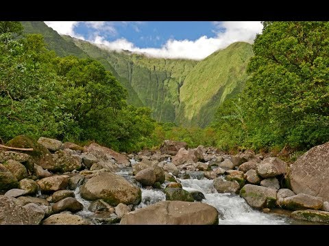 Wai'ale'ale (Blue Hole) Kauai Hike - 2017