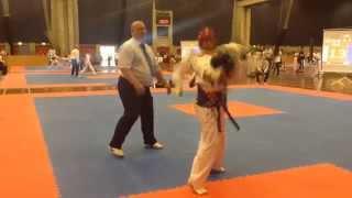 wonderful copenhagen 2015 - taekwondo tournament