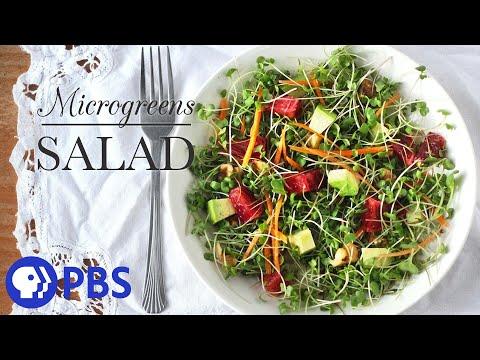 Microgreens Salad | Kitchen Vignettes for PBS | PBS Food