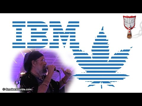 From IBM Exec to Cannabis Breeder - Soma Speaks! - Smokers Guide TV Amsterdam