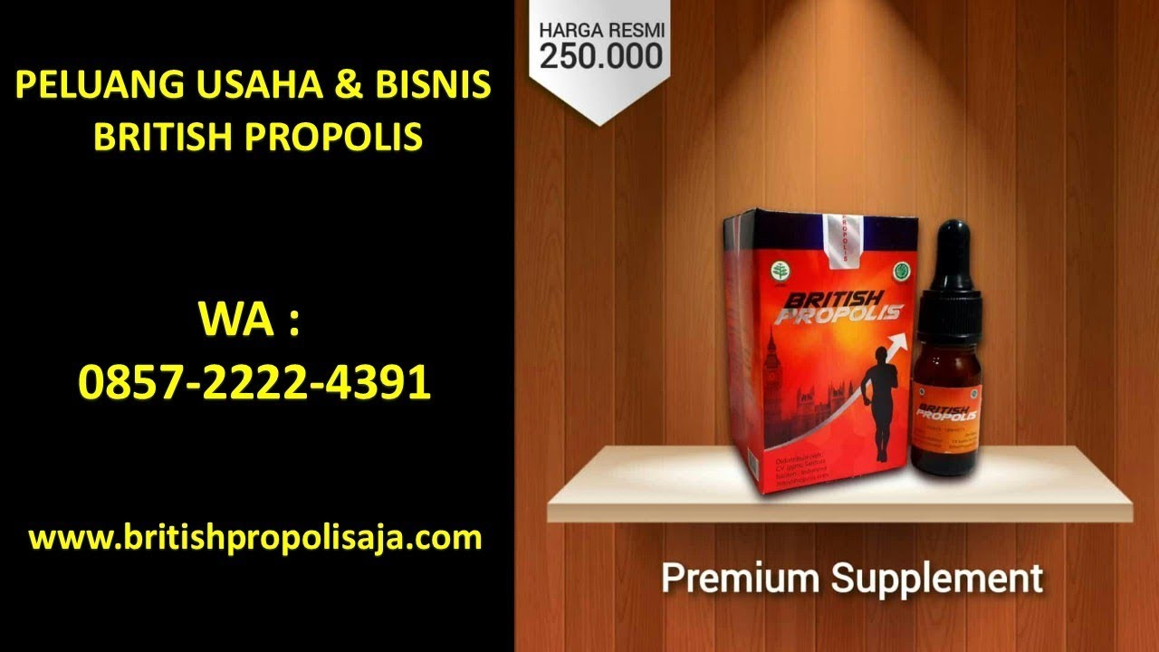 Peluang Usaha Yang Potensial Wa 085722224391 British Propolis