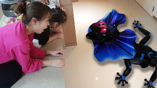 이건 무슨 도마뱀이에요? 서은이와 엄마의 벌레 무당벌레 목도리 도마뱀 장난감 대결 쥬라기 공원 Seoeun VS Mommy Shawl lizard Toy for Kids